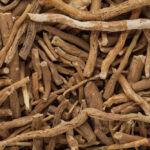Ashwagandha extract (Shoden®)
